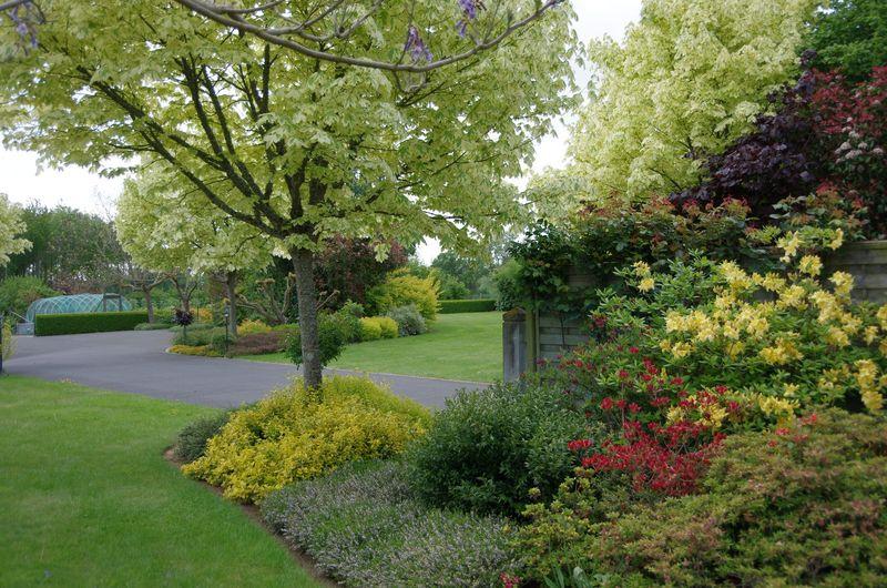 Comment nettoyer votre jardin