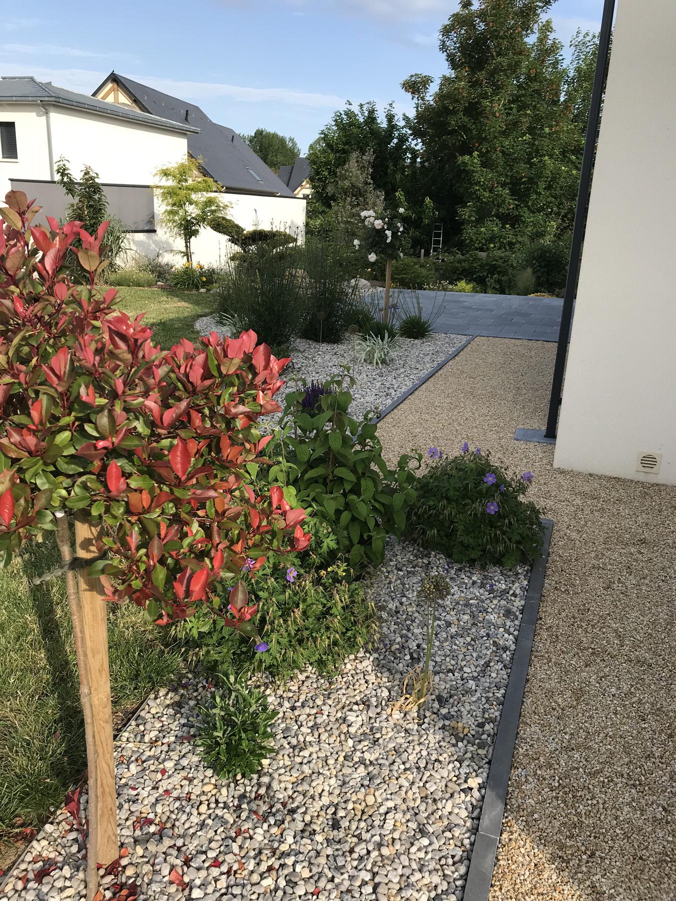 Plante pour jardin - Aménagement de jardin | Paysages Conseil