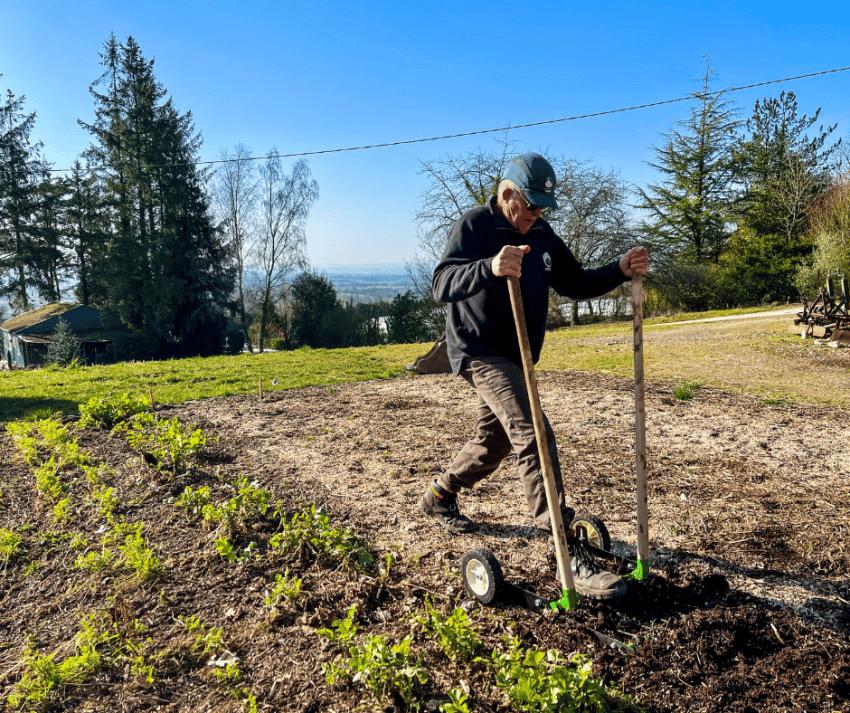 Le potager en permaculture c'est quoi ?
